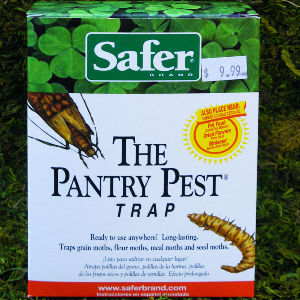 Pantry-Pest-Trap-800px