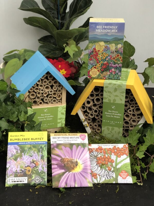 Bee houses and bee friendly seed mixes
